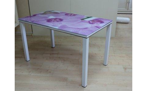 Обеденный стол СТС 10